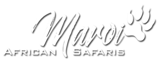 South African Safaris Logo Image